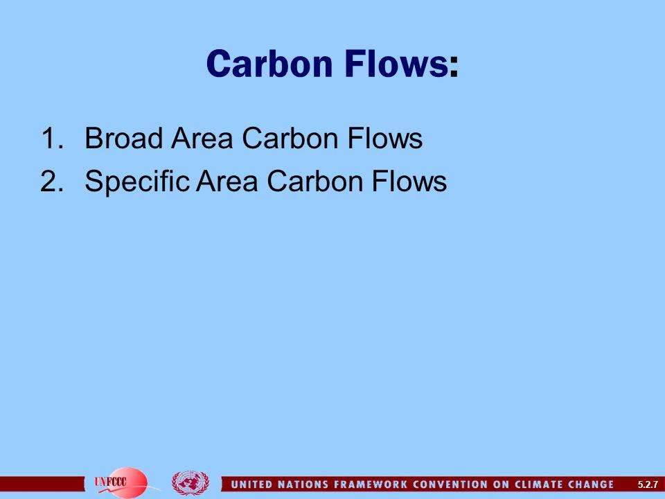 5.2.7 Carbon Flows: 1.Broad Area Carbon Flows 2.Specific Area Carbon Flows
