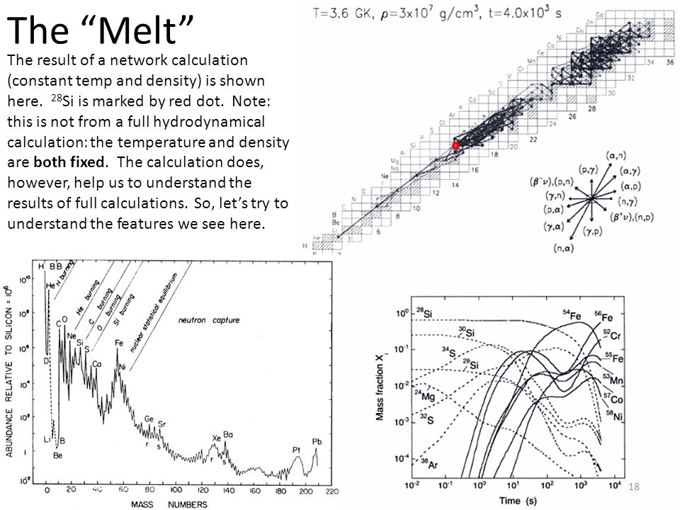The Melt 18 The result of a network calculation (constant temp and density) is shown here.