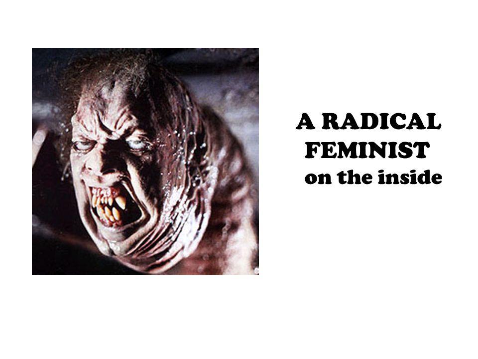A RADICAL FEMINIST on the inside