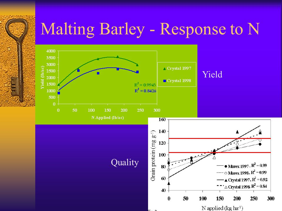 Malting Barley - Response to N Yield Quality