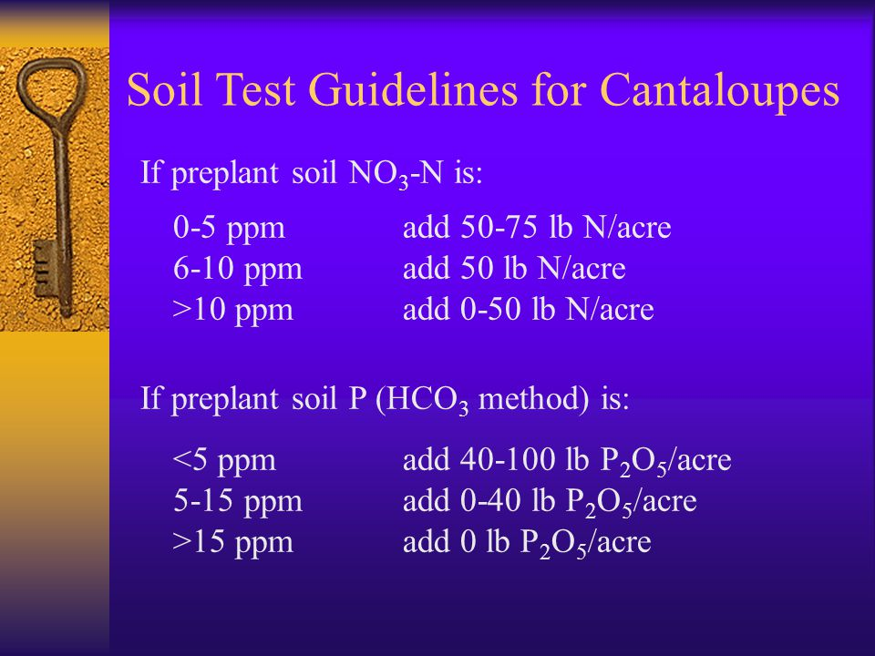 Soil Test Guidelines for Cantaloupes If preplant soil NO 3 -N is: 0-5 ppm add 50-75 lb N/acre 6-10 ppm add 50 lb N/acre >10 ppm add 0-50 lb N/acre If preplant soil P (HCO 3 method) is: 15 ppmadd 0 lb P 2 O 5 /acre