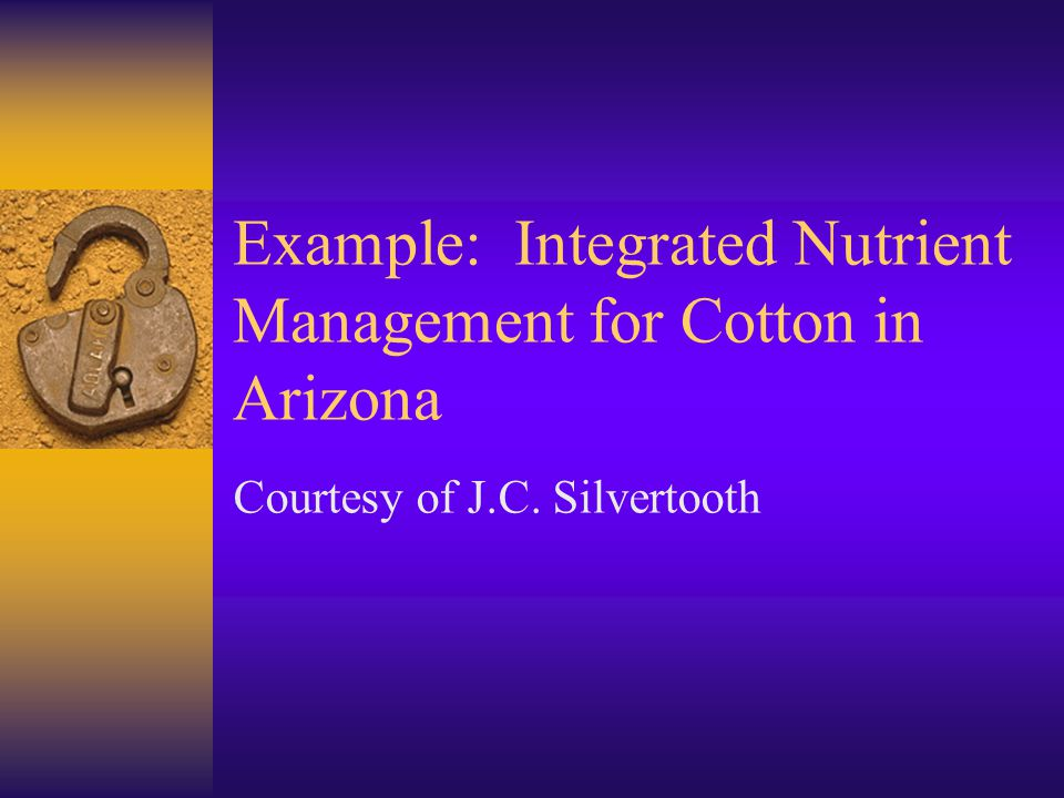 Example: Integrated Nutrient Management for Cotton in Arizona Courtesy of J.C. Silvertooth