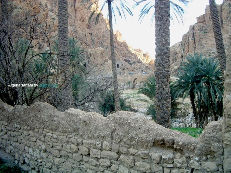 Algeria sahara by jasmins49jasmins49