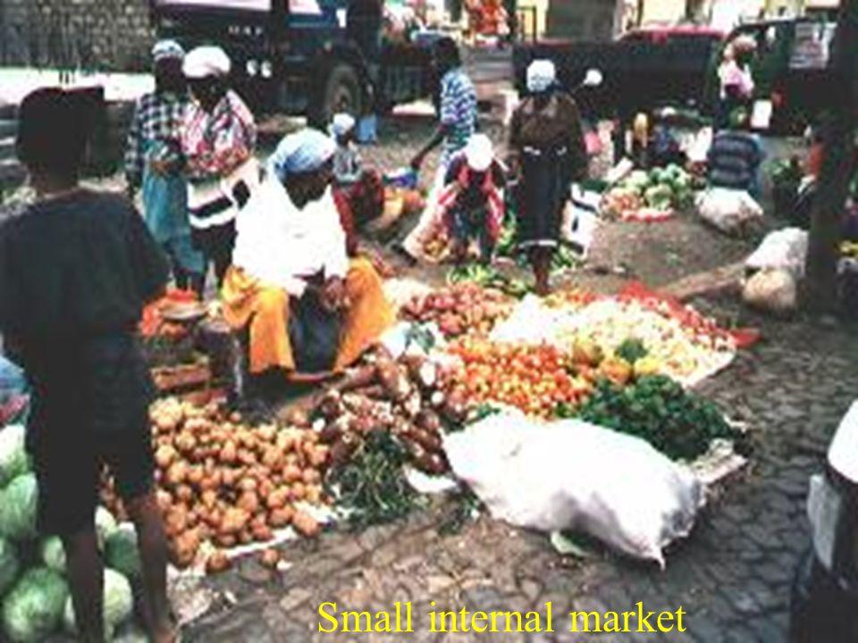 Small internal market