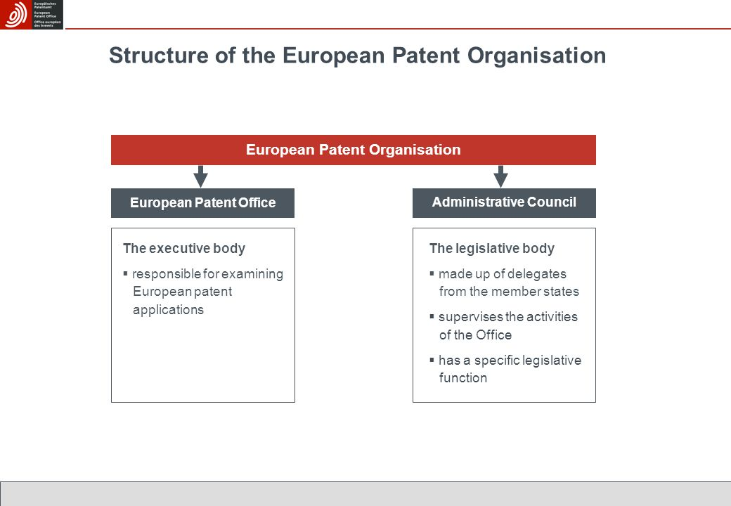 Structure of the European Patent Organisation The legislative body  made up of delegates from the member states  supervises the activities of the Office  has a specific legislative function European Patent Organisation Administrative Council European Patent Office The executive body  responsible for examining European patent applications