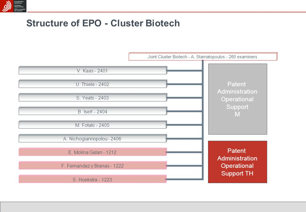 Structure of EPO - Cluster Biotech Patent Administration Operational Support TH Patent Administration Operational Support M