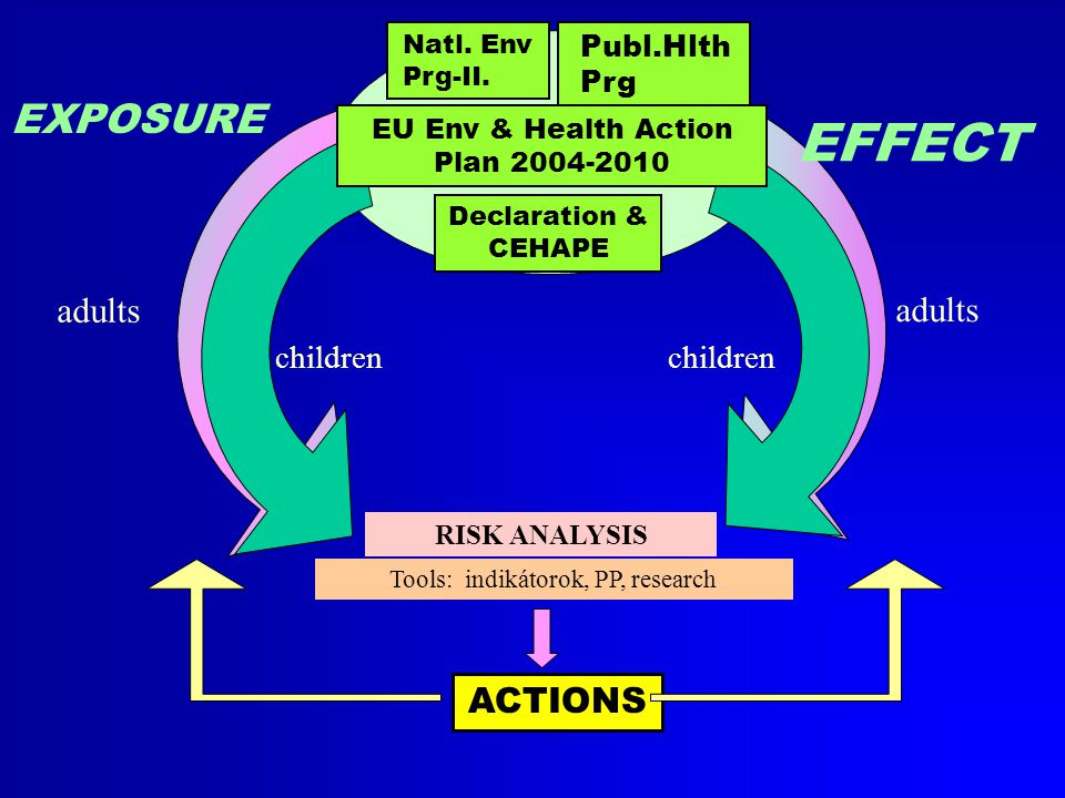 Declaration & CEHAPE RISK ANALYSIS Tools: indikátorok, PP, research ACTIONS EXPOSURE EFFECT children adults Natl.