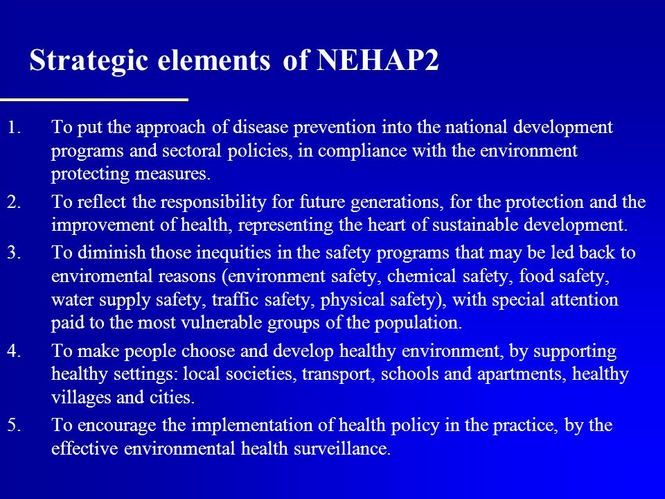 Strategic elements of NEHAP2 1.