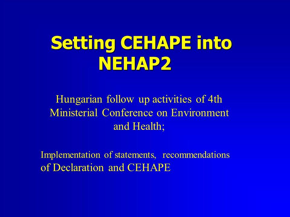 Strategic elements of NEHAP2 1.