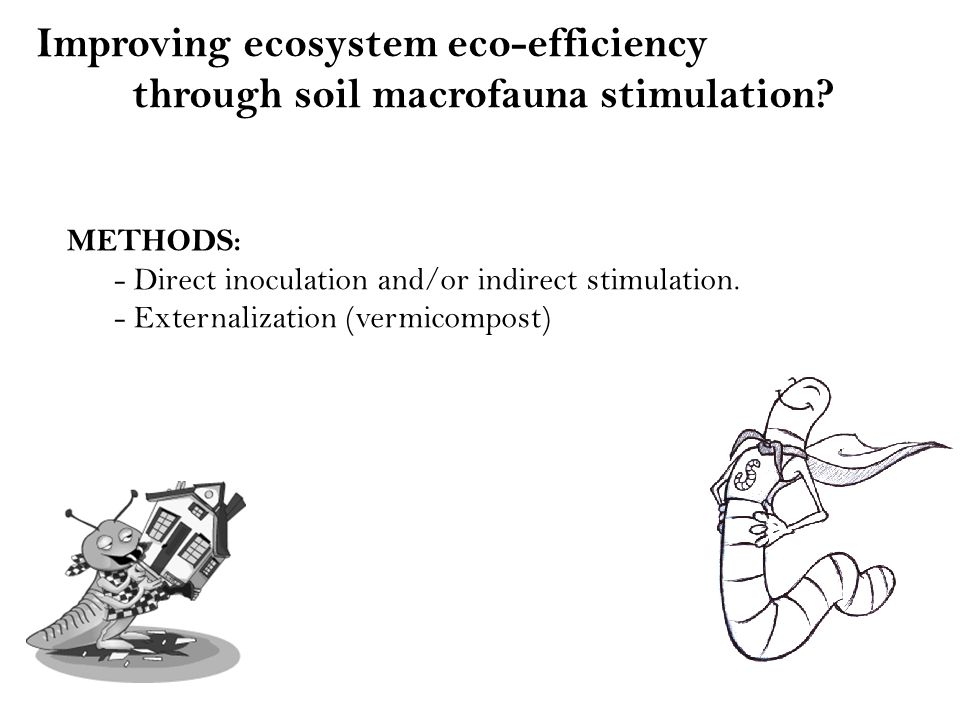 Improving ecosystem eco-efficiency through soil macrofauna stimulation.