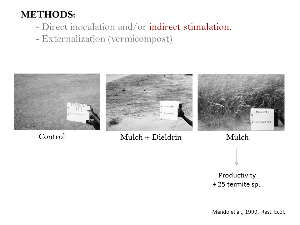 METHODS: - Direct inoculation and/or indirect stimulation.