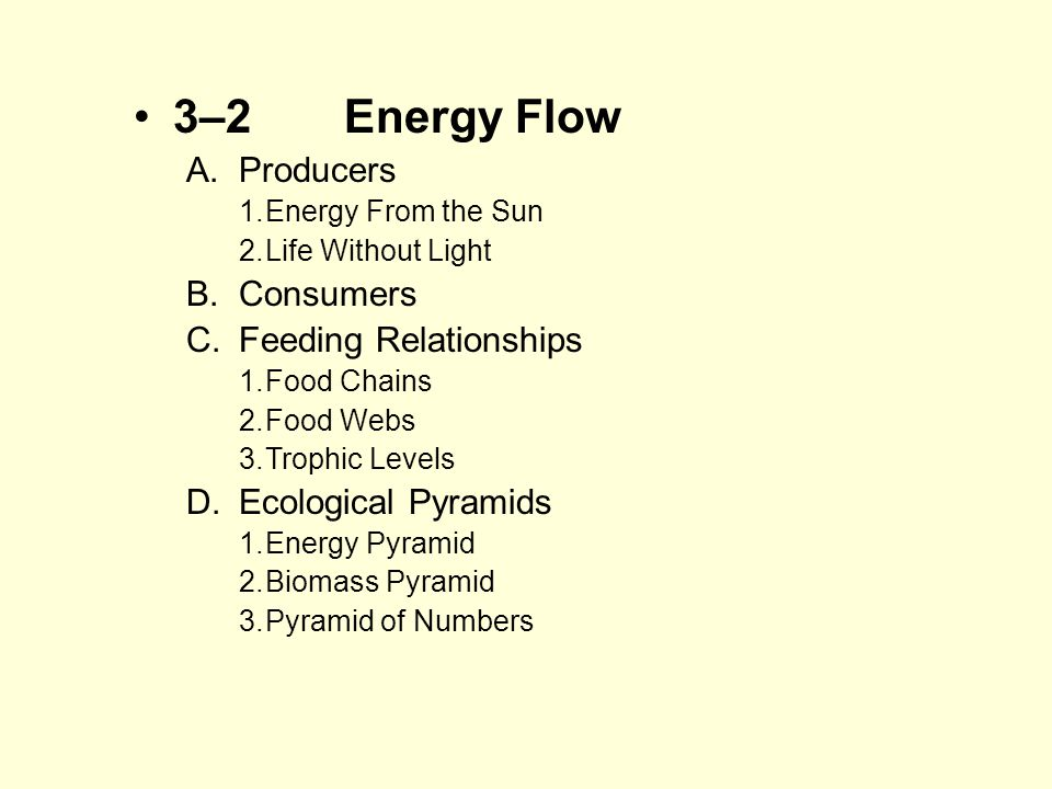 3–2Energy Flow A.Producers 1.Energy From the Sun 2.Life Without Light B.Consumers C.Feeding Relationships 1.Food Chains 2.Food Webs 3.Trophic Levels D