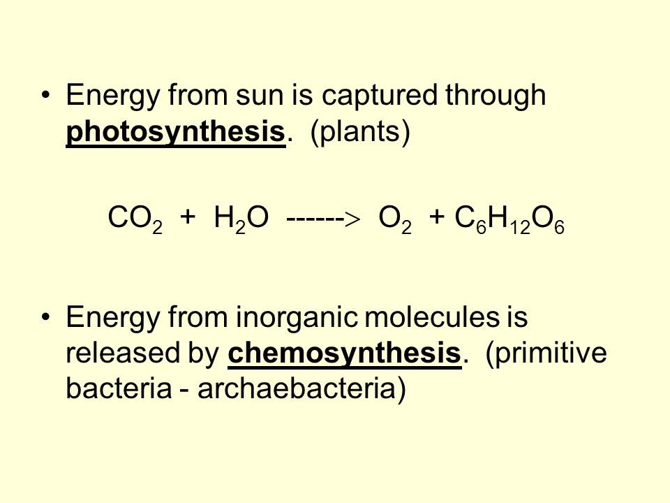 Energy from sun is captured through photosynthesis. (plants) CO 2 + H 2 O ------  O 2 + C 6 H 12 O 6 Energy from inorganic molecules is released by c