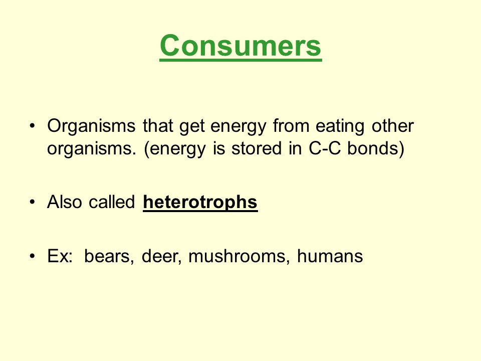 Categories of Consumers Herbivores: eat plants.Carnivores: eat animals.