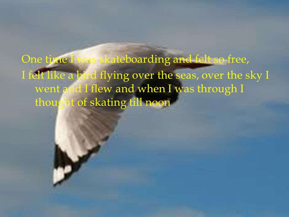 One time I was skateboarding and felt so free, I felt like a bird flying over the seas, over the sky I went and I flew and when I was through I though