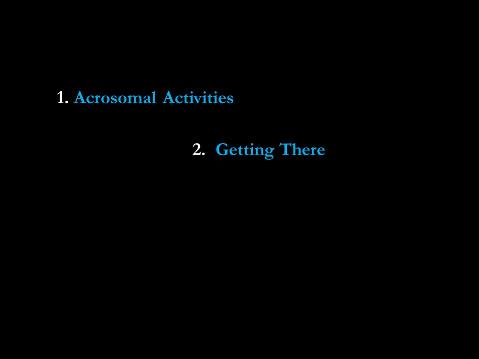 1. Acrosomal Activities 2. Getting There