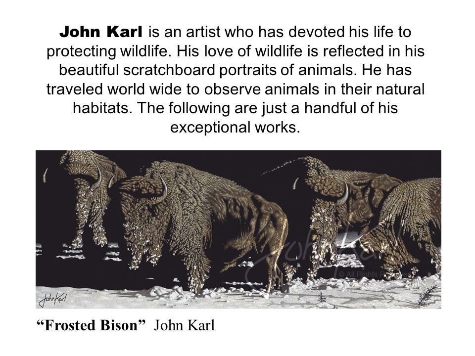 John Karl is an artist who has devoted his life to protecting wildlife.