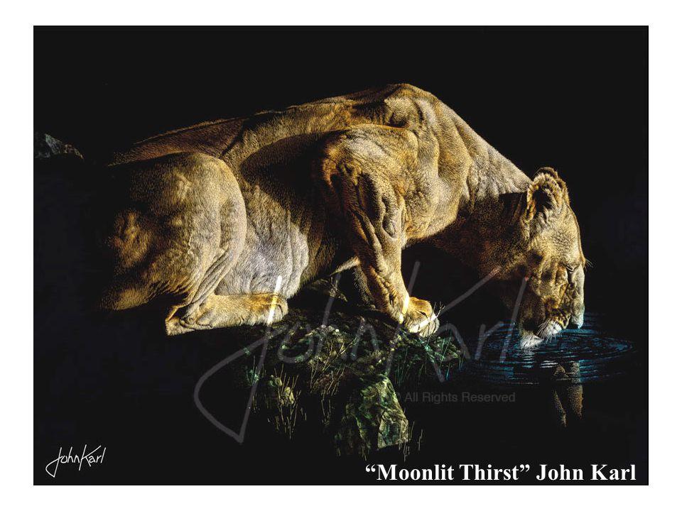 Moonlit Thirst John Karl