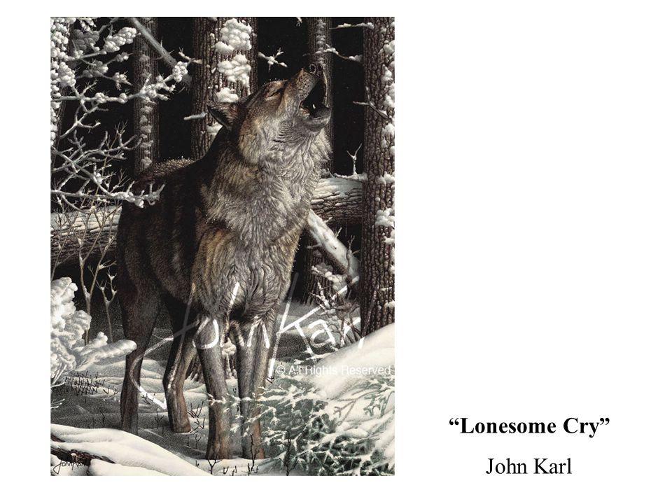 Lonesome Cry John Karl