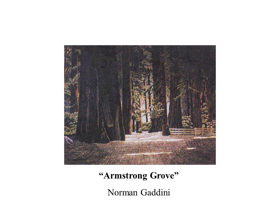 Armstrong Grove Norman Gaddini