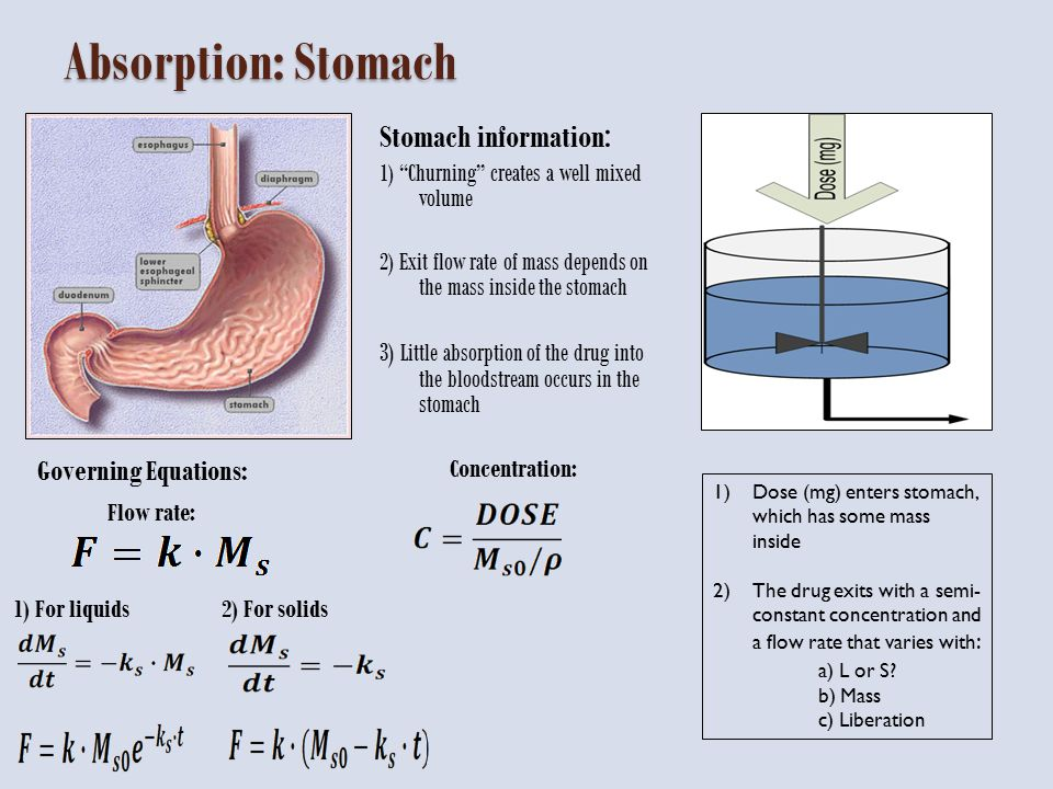 Stomach Results