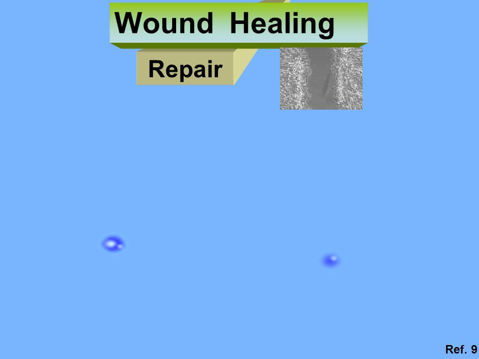 Repair Wound Healing Ref. 9