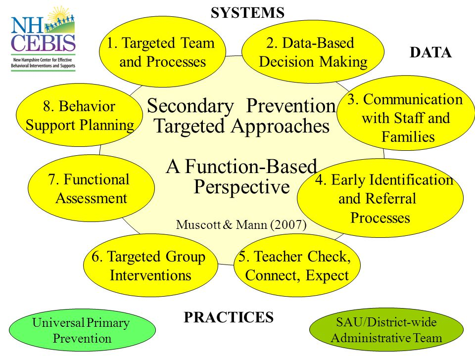 Secondary Prevention Targeted Approaches A Function-Based Perspective 2.