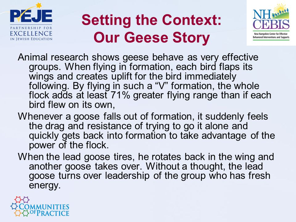 Setting the Context: Our Geese Story Animal research shows geese behave as very effective groups.