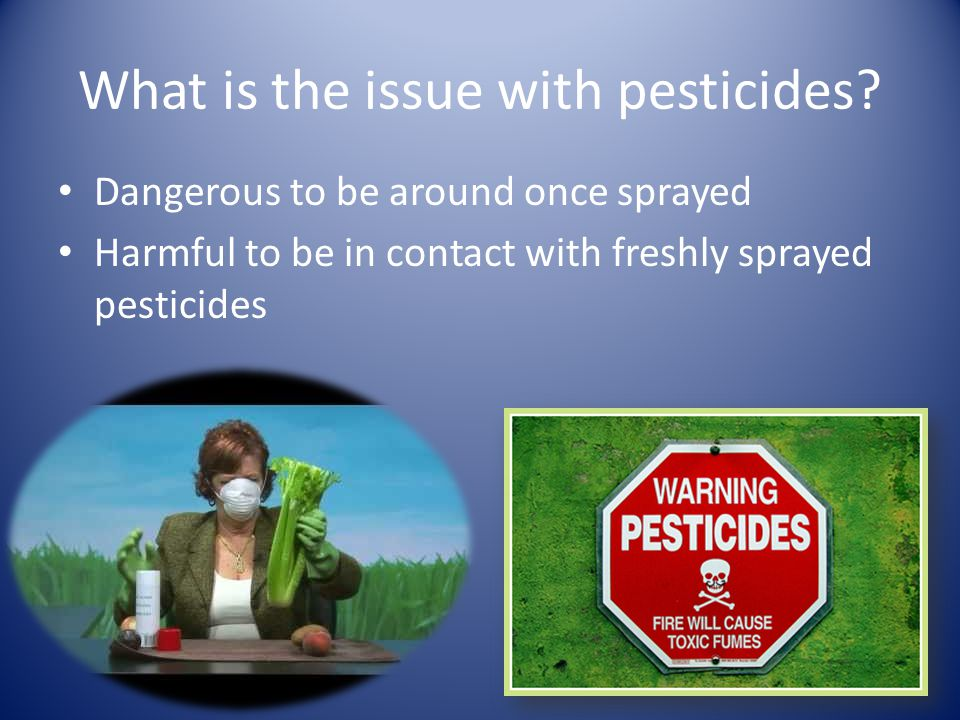 Disadvantages Deadly chemicals Do not stay in area where crops are growing Will sink down to soil and effect upcoming blossoms.
