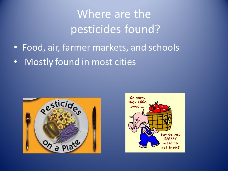 Where are the pesticides found? Food, air, farmer markets, and schools Mostly found in most cities