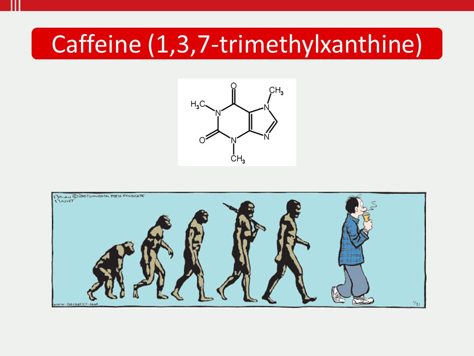 Caffeine (1,3,7-trimethylxanthine)