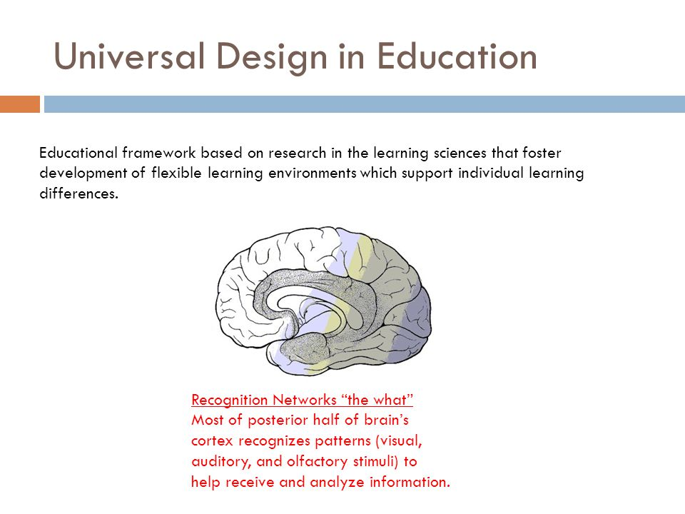 UDL Foundations: Brain-based Learning Networks Strategic Networks the how The frontal lobes are responsible for planning and executing actions.