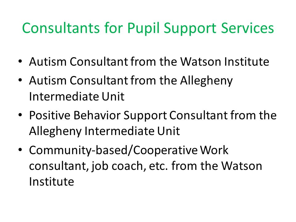 Consultants for Pupil Support Services Autism Consultant from the Watson Institute Autism Consultant from the Allegheny Intermediate Unit Positive Beh