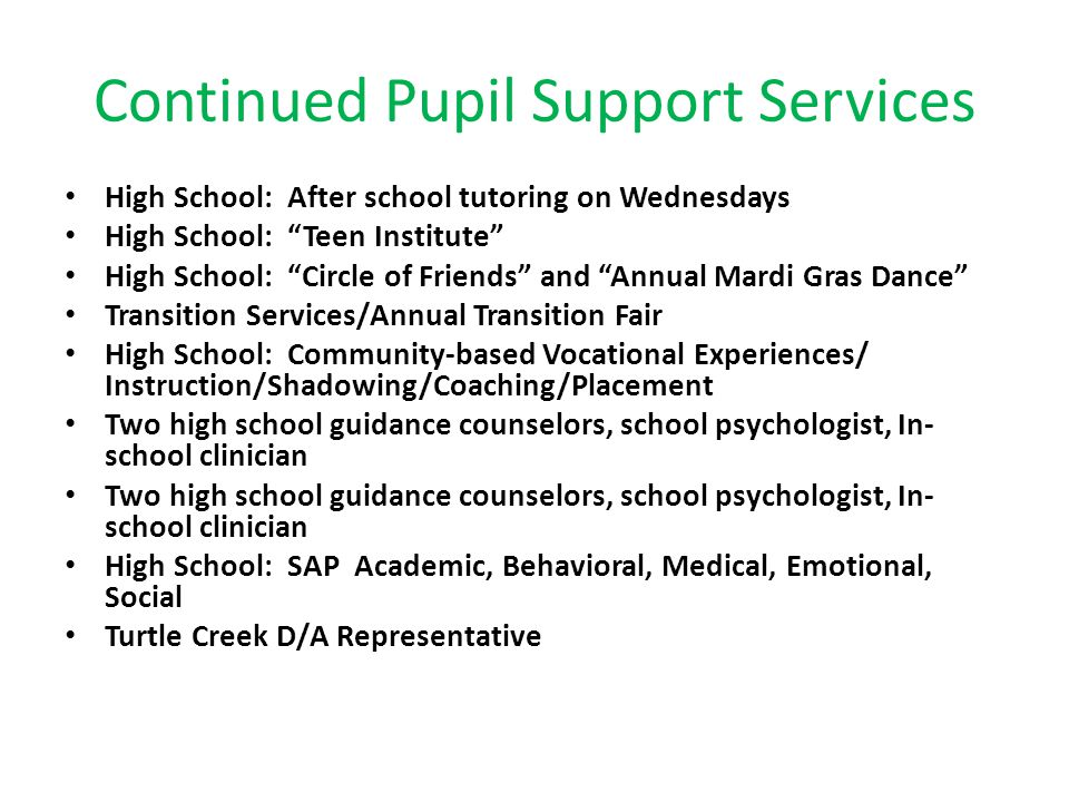 """Continued Pupil Support Services High School: After school tutoring on Wednesdays High School: """"Teen Institute"""" High School: """"Circle of Friends"""" and """""""