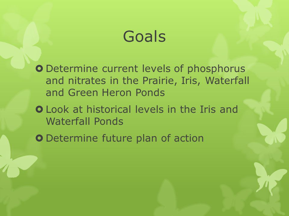 Goals  Determine current levels of phosphorus and nitrates in the Prairie, Iris, Waterfall and Green Heron Ponds  Look at historical levels in the Iris and Waterfall Ponds  Determine future plan of action