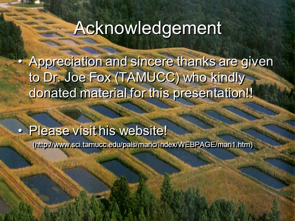 Acknowledgement Appreciation and sincere thanks are given to Dr.
