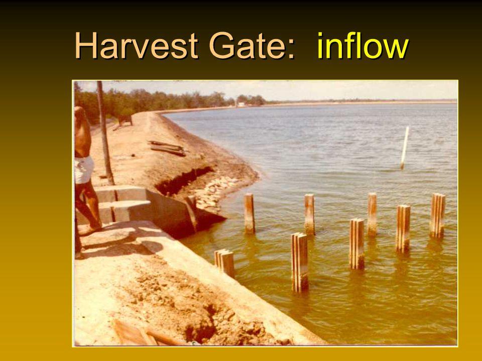 Harvest Gate: inflow