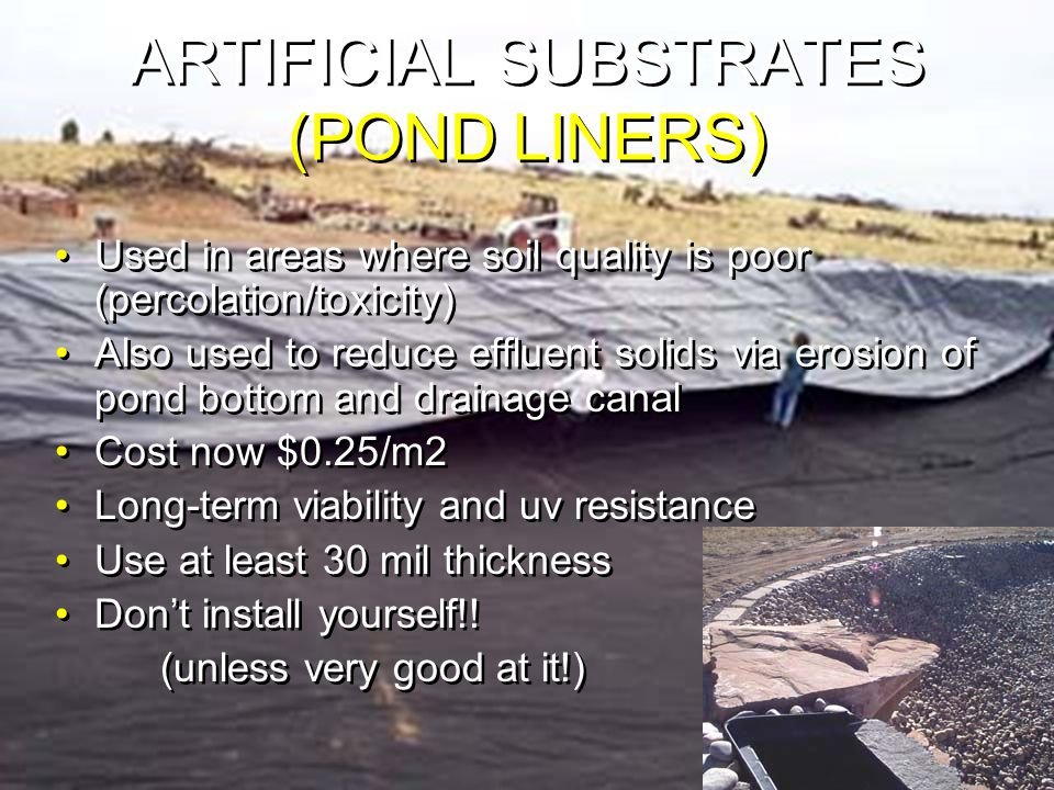 ARTIFICIAL SUBSTRATES (POND LINERS) Used in areas where soil quality is poor (percolation/toxicity) Also used to reduce effluent solids via erosion of pond bottom and drainage canal Cost now $0.25/m2 Long-term viability and uv resistance Use at least 30 mil thickness Don't install yourself!.