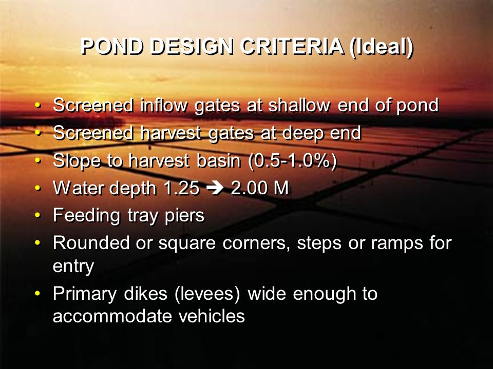 POND DESIGN CRITERIA (Ideal) Screened inflow gates at shallow end of pond Screened harvest gates at deep end Slope to harvest basin (0.5-1.0%) Water depth 1.25  2.00 M Feeding tray piers Rounded or square corners, steps or ramps for entry Primary dikes (levees) wide enough to accommodate vehicles Screened inflow gates at shallow end of pond Screened harvest gates at deep end Slope to harvest basin (0.5-1.0%) Water depth 1.25  2.00 M Feeding tray piers Rounded or square corners, steps or ramps for entry Primary dikes (levees) wide enough to accommodate vehicles
