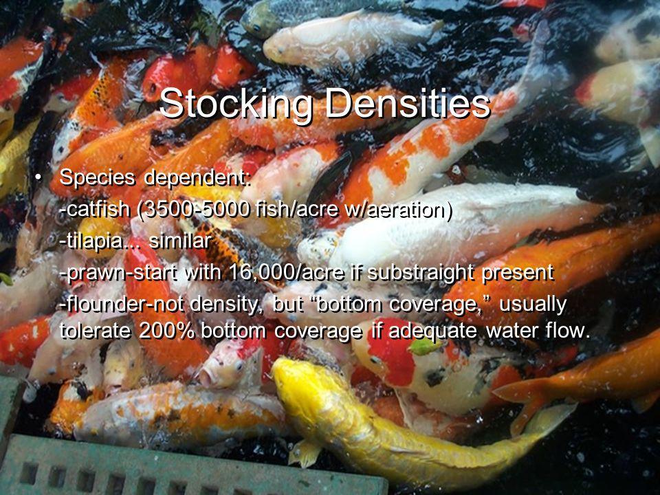 Stocking Densities Species dependent: -catfish (3500-5000 fish/acre w/aeration) -tilapia...