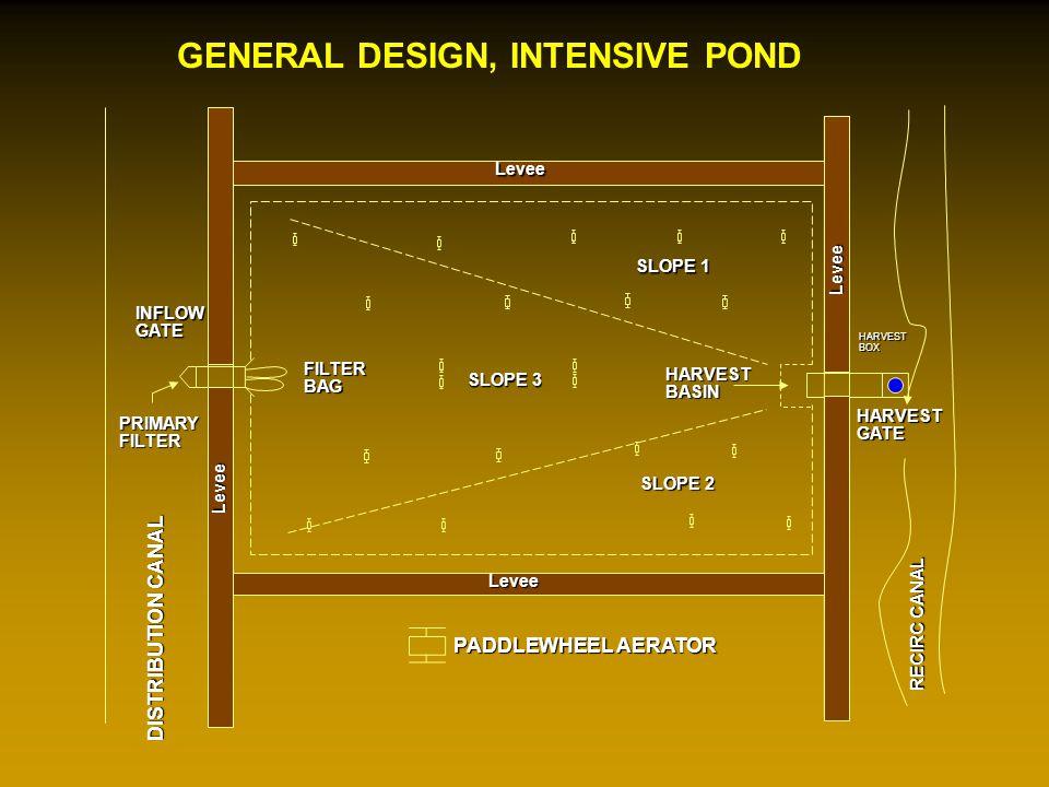 GENERAL DESIGN, INTENSIVE POND