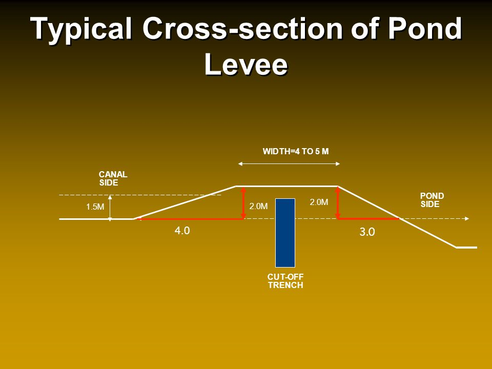 WIDTH=4 TO 5 M POND SIDE 4.0 CANAL SIDE 2.0M 1.5M CUT-OFF TRENCH Typical Cross-section of Pond Levee 2.0M 3.0