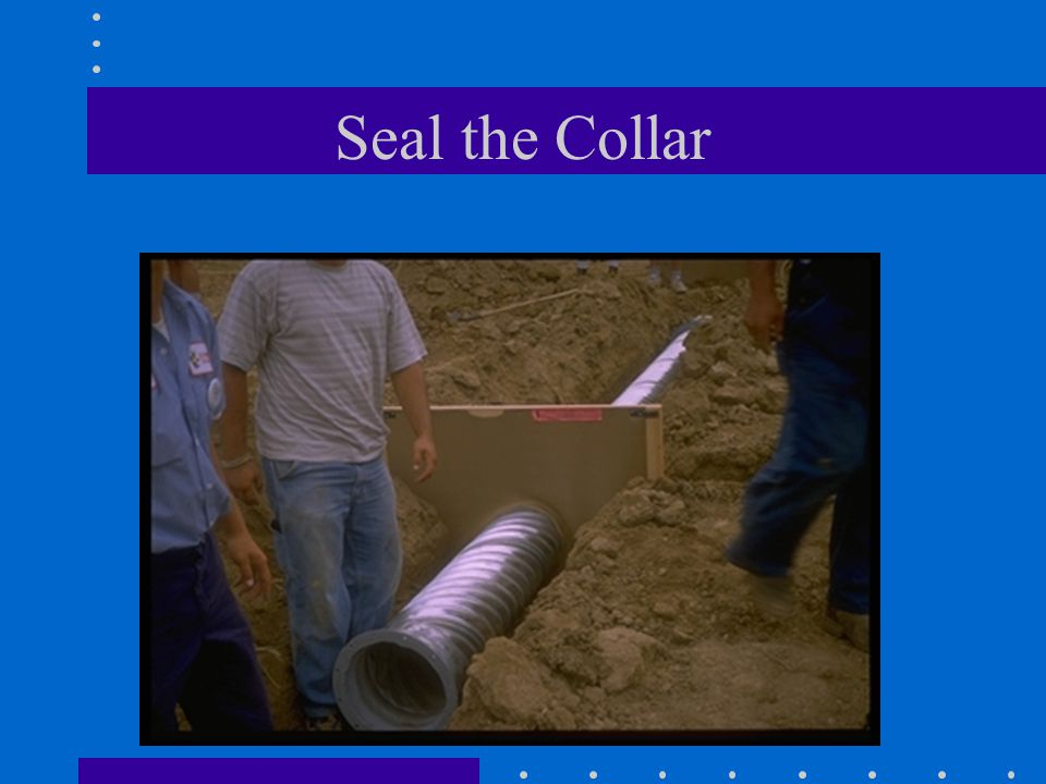 Seal the Collar