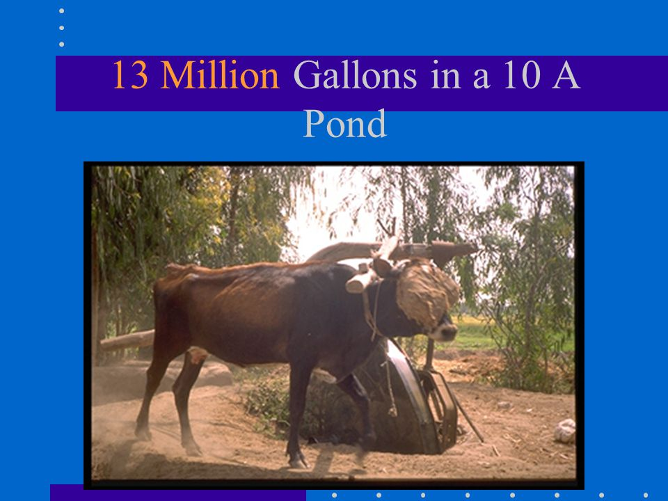 13 Million Gallons in a 10 A Pond