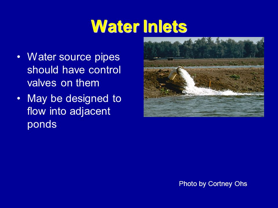 Water Inlets Water source pipes should have control valves on them May be designed to flow into adjacent ponds Photo by Cortney Ohs