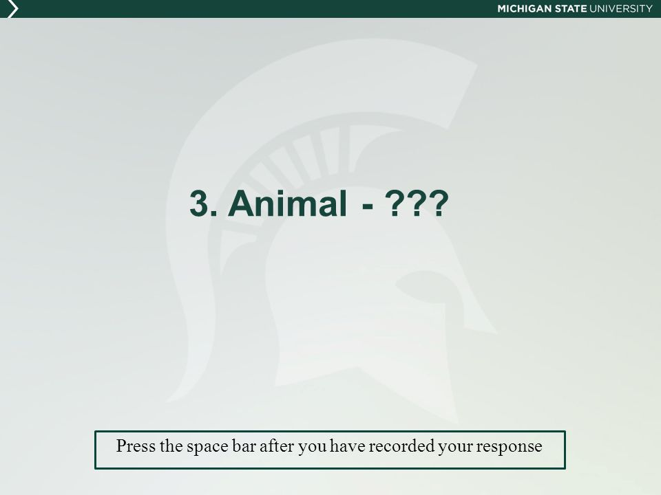 3. Animal - Press the space bar after you have recorded your response