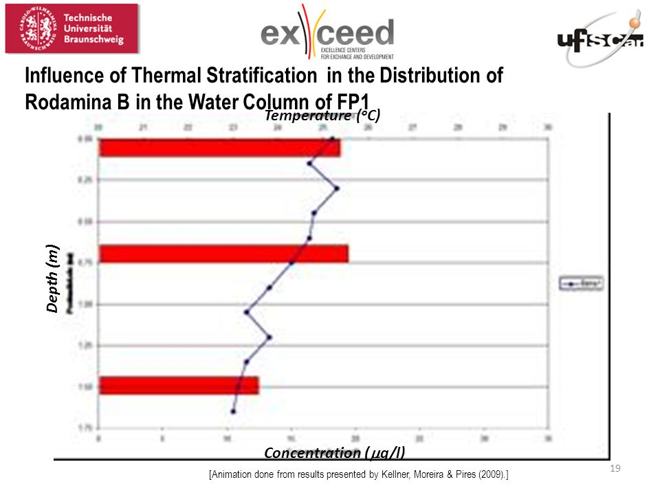 19 Temperature ( o C) Depth (m) Concentration (  g/l) [Animation done from results presented by Kellner, Moreira & Pires (2009).] Influence of Thermal Stratification in the Distribution of Rodamina B in the Water Column of FP1