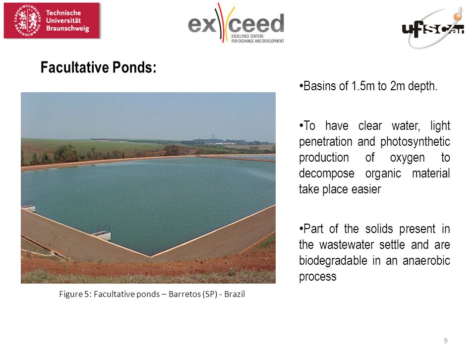 Figure 5: Facultative ponds – Barretos (SP) - Brazil Facultative Ponds: Basins of 1.5m to 2m depth. To have clear water, light penetration and photosy