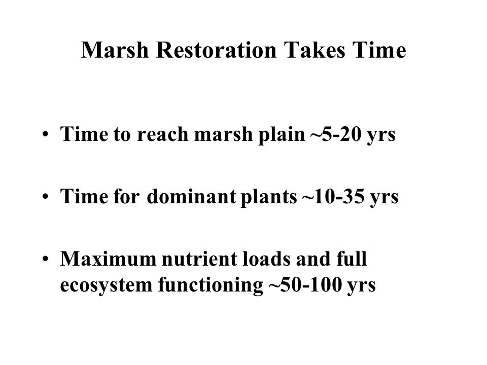 Marsh Restoration Takes Time Time to reach marsh plain ~5-20 yrs Time for dominant plants ~10-35 yrs Maximum nutrient loads and full ecosystem functioning ~50-100 yrs