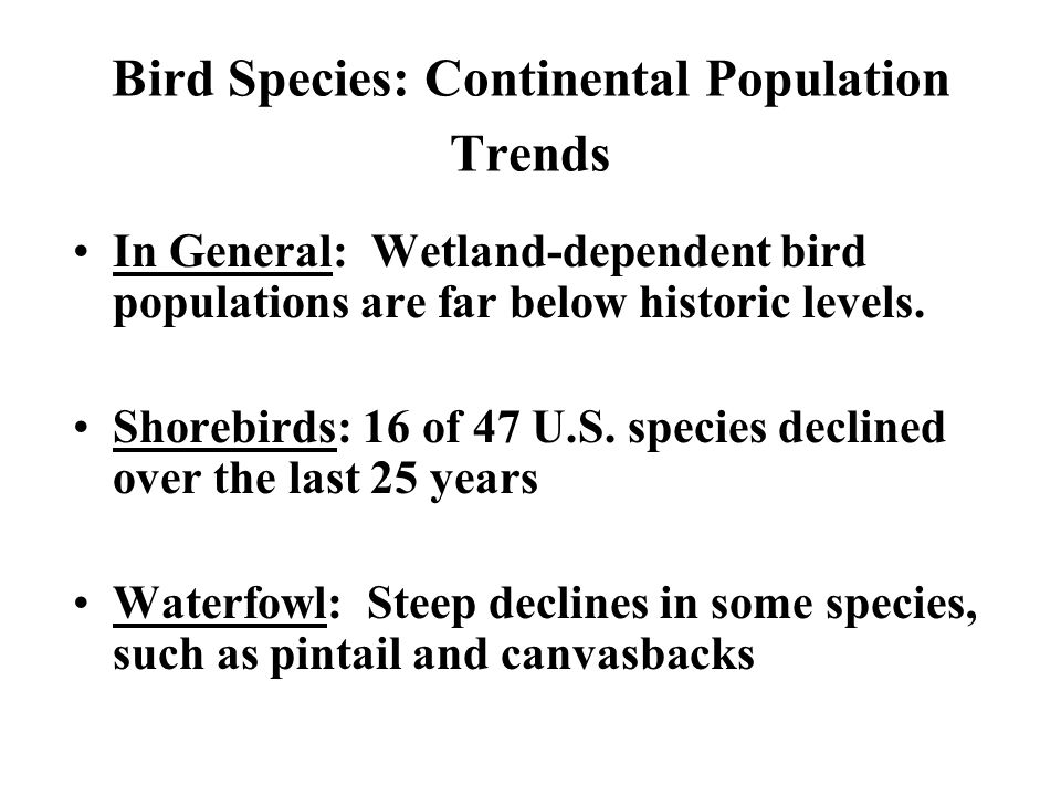 Bird Species: Continental Population Trends In General: Wetland-dependent bird populations are far below historic levels.